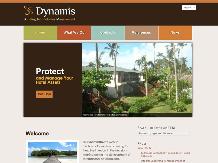 Dynamis BTM WordPress Website WebVai